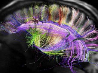 Αξιοποίησε τον εγκέφαλό σου Μέρος 2ο DataNews