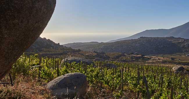 Η μαρμαροτεχνία και το κρασί της Τήνου αποθεώνονται από το Guardian